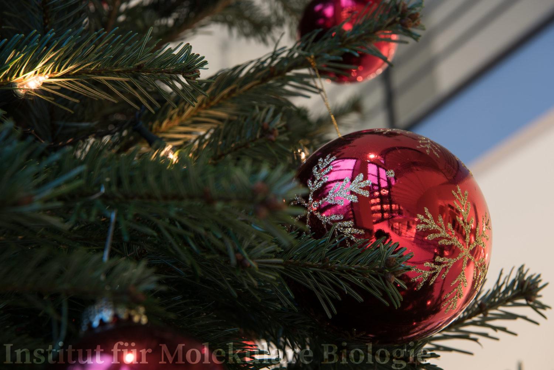 Pick, _THEMES, christmas, christmas card, decoration, dekoration, documentation, dokumentation, fest dekoration, festdeko, festive decoration, jahreszeiten, season, weihnachten, weihnachtskarte, winter