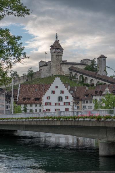 Europa, Flussuferweg Feuerthalen, Kanton Schaffhausen, Nordostschweiz, Rhein, Rhine, Schaffhausen, Schweiz, riverside path, sh