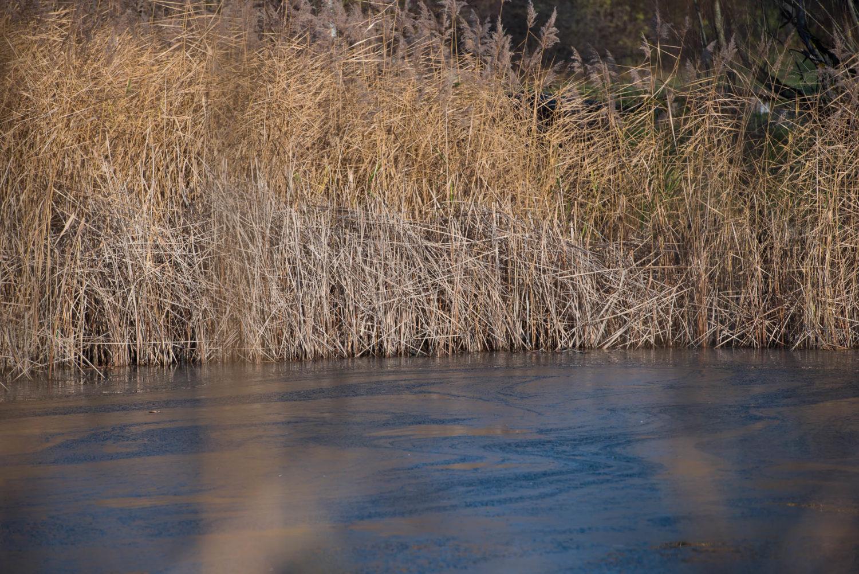 Für eine Weile wechselt sich der Herbst und der Winter ab. Geprägt durch Frost in der Nacht und morgens, dem gefrorenen See. Gleichzeitig dominieren warme Herbstfarben im Sonnenschein.